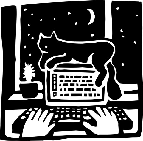 Computer Cat Night low res
