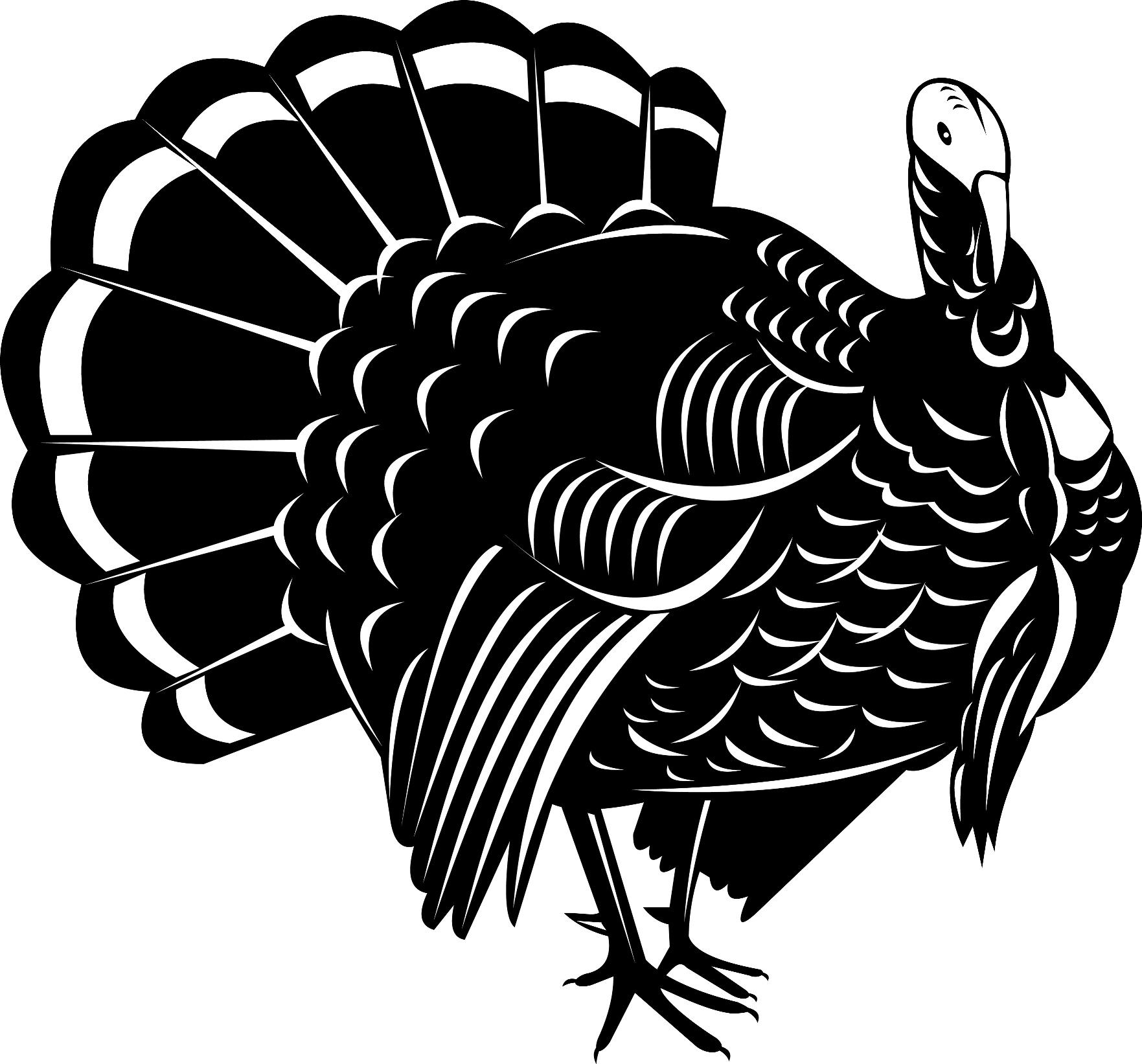 6 johns thanksgiving